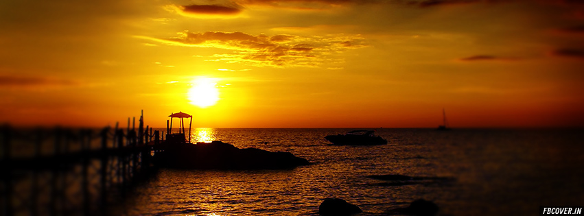 golden sunset nature cover photos