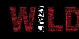 wild typography cover photos