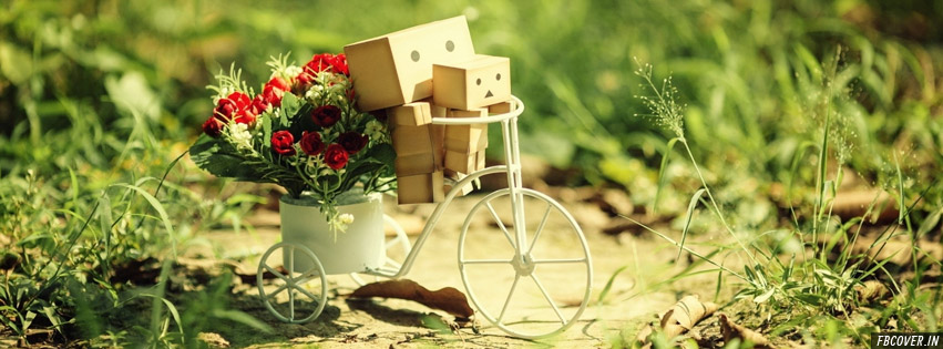 danbo spring time fb cover photos
