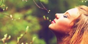 spring fragrance timeline covers