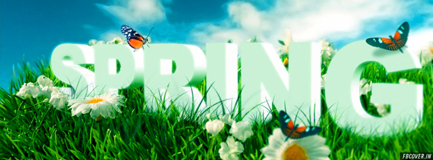 spring fb covers
