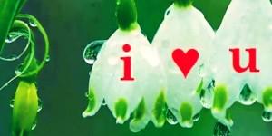 i love you fb covers