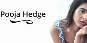 pooja hedge