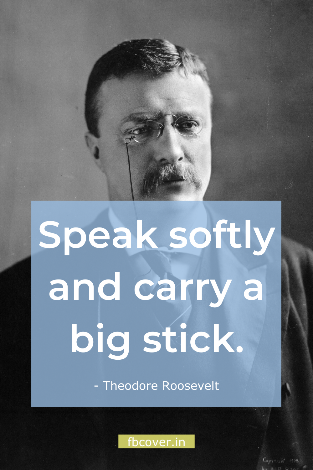 speak softly and carry a big stick quote, theodore roosevelt quotes